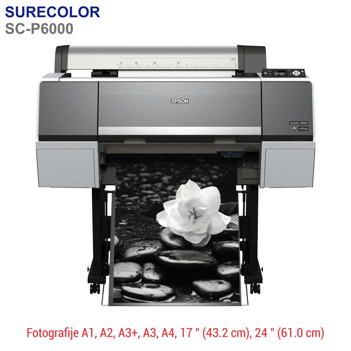 EPSON SureLab P6000
